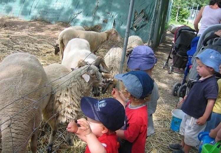 5 conseils pour ouvrir une ferme pédagogique ! PARCOURS