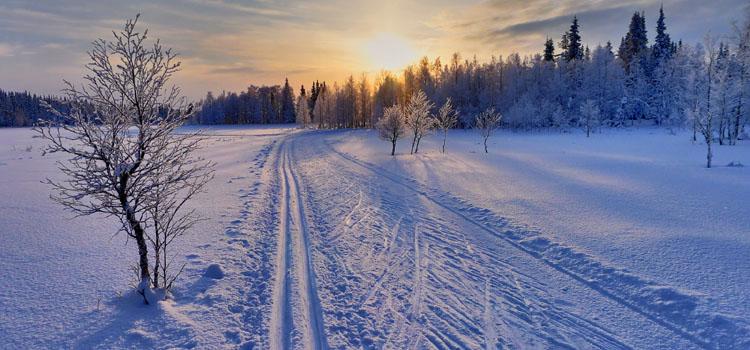 Paysage Ski