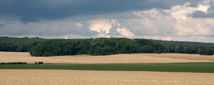 Picardie-Region2