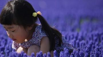 japanese-child